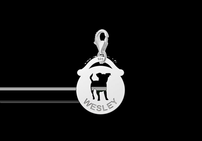 Graveer Hier☝️Jouw Zilveren Dieren Naambedel Rond Hondje