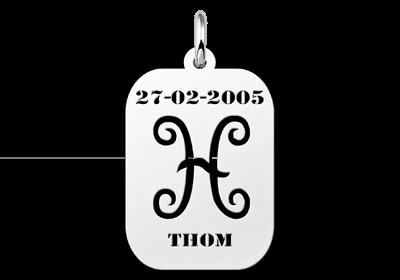 Zilveren hangertje astrologie Vissen