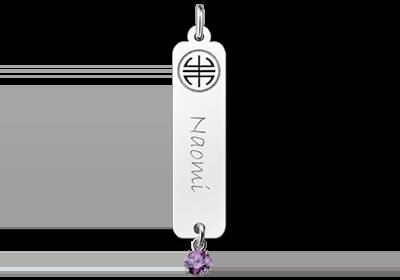 Zilveren naamhanger Shou zirkonia paars